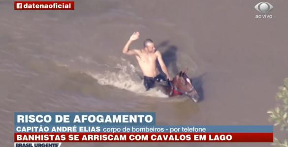 Homem agride cavalo dentro de lagoa em Carapicuíba