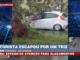 Árvore cai em cima de carro e motorista sai com ferimentos leves
